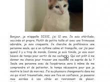 Image de Sissi, adorable chat de 12 ans cherche un nouveau foyer