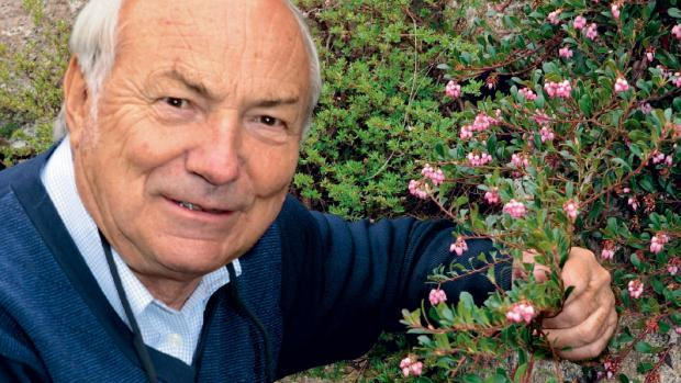 Les plantes, nos alliées contre l'infection - Dr. Kurt