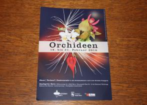 Image de l'activite visite guidée exposition Orchidée Berne (jeudi)