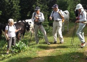 Image de l'activite Du Marchairuz au Mont Tendre