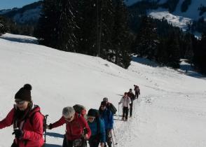 Image de l'activite Le sommet du Niremont