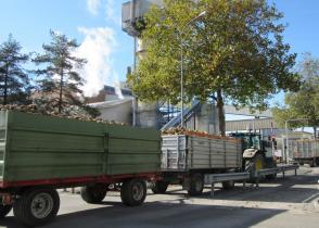 Image de l'activite le sucre suisse à Aarberg