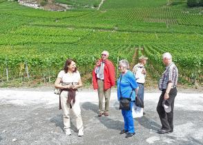 Image de l'activite VIGNE À FARINET - Sentier des Vitraux - REPORTÉ AU MARDI 24 JUIN