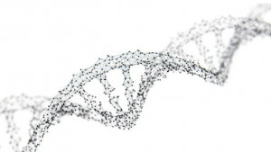 Test génétique: votre ADN vaut de l'or!
