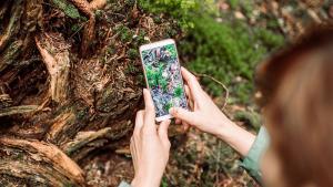 Quand le numérique se met au service de la nature