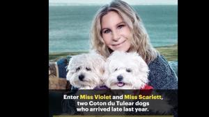 Barbra Streisand a fait cloner son chien préféré deux fois