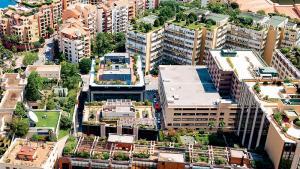 Ecologie : des espaces vertssur les toits
