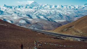 33 virus au tibet