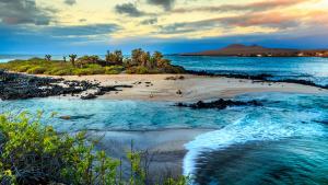 Galápagos: un autre Jurassic Park