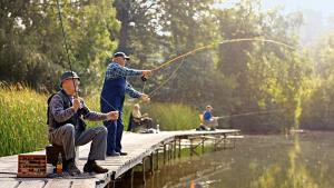 Pêcheurs, à vos lignes !