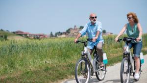 Le formidable engouement pour le vélo électrique