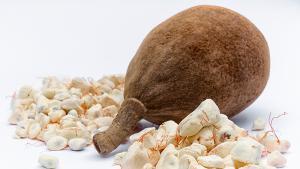 Le baobab booste nos assiettes