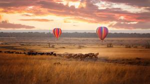 Safari de rêve en terres kenyanes