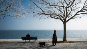 Neuchâtel offre un atelier pour apprendre à marcher en ville