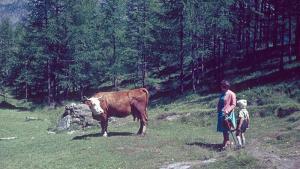 Eaux et montagnes : la Suisse d'il y a 50 ans