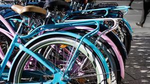 Mobilité : le vélo revient dans le peloton de tête