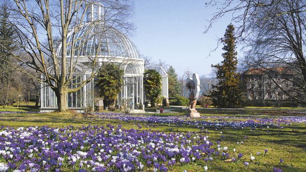 les plus beaux jardins botaniques de suisse romande - Jardin Botanique Geneve