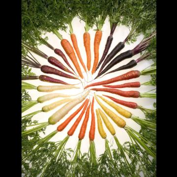 Image de Rüeblimärt (marché aux carottes)