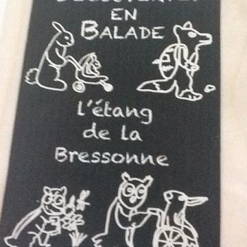Image de Balade à l'Etang de la Bressonne, Chalet à Gobet Attention, reportée au mardi 15.07, cause de pluie