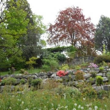 Image de Musée et jardins Botaniques de Lausanne - Reporte à mercredi 20 aout