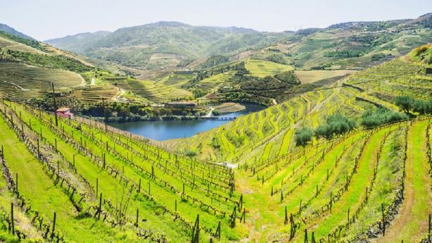 Image de La Vallée du Douro, une nature préservée